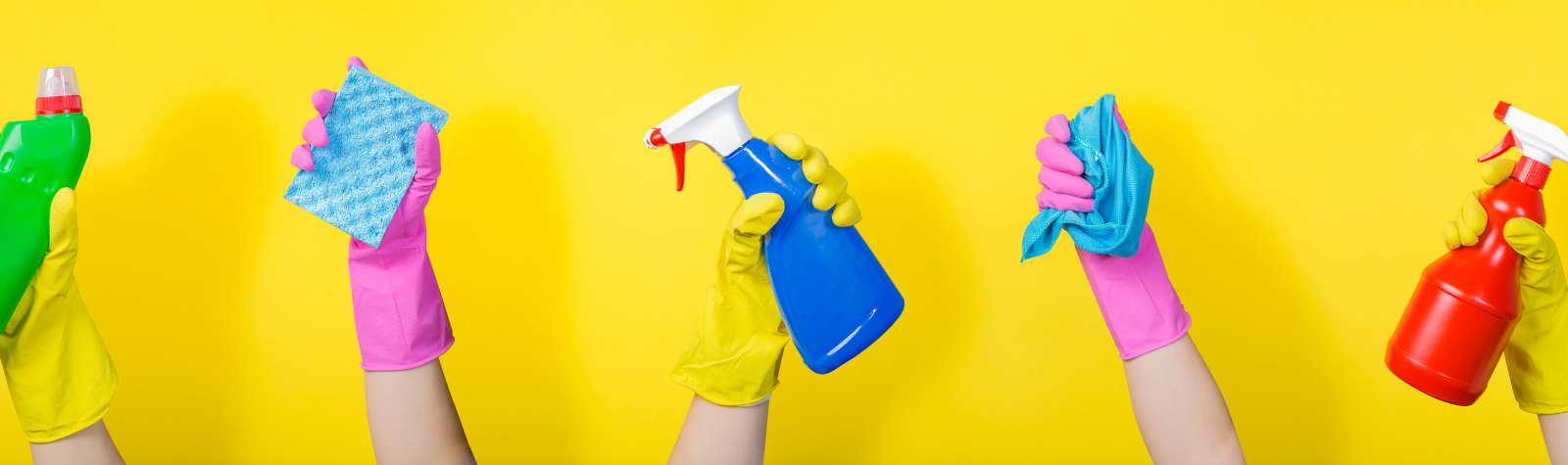 The Cleaning Industry